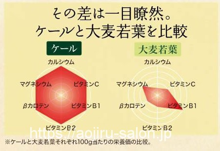 ケールの栄養素グラフ