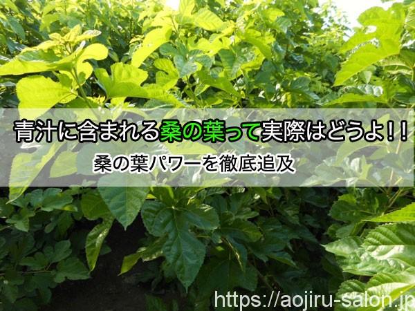 青汁に含まれる桑の葉